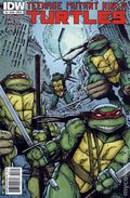 Teenage Mutant Ninja Turtles (2011 IDW) 3B