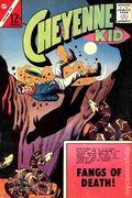 Cheyenne Kid (1958 Charlton) 38