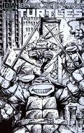 Teenage Mutant Ninja Turtles (2011 IDW) 4RI-A