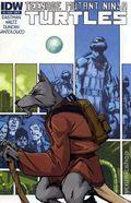 Teenage Mutant Ninja Turtles (2011 IDW) 5B