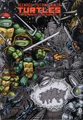 Teenage Mutant Ninja Turtles HC (2011-2015 IDW) The Ultimate Collection 2-1ST