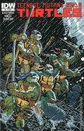 Teenage Mutant Ninja Turtles (2011 IDW) 8C