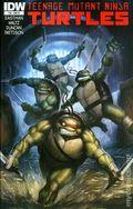Teenage Mutant Ninja Turtles (2011 IDW) 10RI