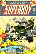 Superboy (1949-1979 1st Series DC) Mark Jewelers 196MJ