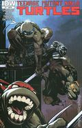 Teenage Mutant Ninja Turtles (2011 IDW) 11RI