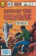 Beyond the Grave (1975 Charlton) 13
