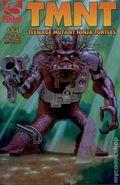 Teenage Mutant Ninja Turtles (2001 Mirage) 13