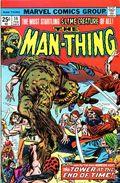 Man-Thing (1974 1st Series) 14