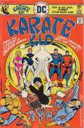 Karate Kid (1976) 1