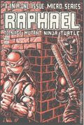 Raphael (1985 Mirage Studio) Teenage Mutant Ninja Turtles 1