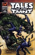 Tales of the Teenage Mutant Ninja Turtles (2004 Mirage) 50