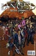 Angel After the Fall (2007 IDW) 17B