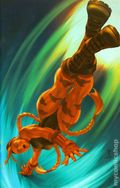 Street Fighter (2003 Image) 11C