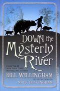 Down the Mysterly River HC (2011 Novel) 1-1ST