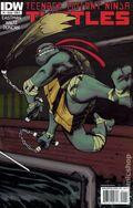Teenage Mutant Ninja Turtles (2011 IDW) 1D