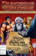 Dungeons and Dragons Forgotten Realms Classics TPB (2011-2012 IDW) 2-1ST