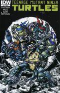 Teenage Mutant Ninja Turtles (2011 IDW) 16RI