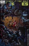 Teenage Mutant Ninja Turtles (2011 IDW) 17B