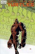 Teenage Mutant Ninja Turtles (2011 IDW) 17RI