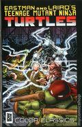 Teenage Mutant Ninja Turtles Color Classics (2012 IDW) 9