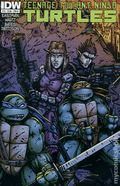 Teenage Mutant Ninja Turtles (2011 IDW) 19B