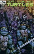 Teenage Mutant Ninja Turtles (2011 IDW) 19B
