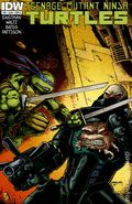 Teenage Mutant Ninja Turtles (2011 IDW) 20B