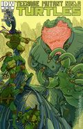 Teenage Mutant Ninja Turtles (2011 IDW) 20RI