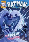 DC Super Heroes Batman: My Frozen Valentine SC (2013) 1-1ST