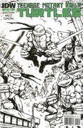 Teenage Mutant Ninja Turtles (2011 IDW) 1F