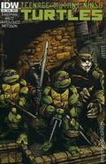 Teenage Mutant Ninja Turtles (2011 IDW) 24B