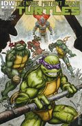 Teenage Mutant Ninja Turtles (2011 IDW) 24RI