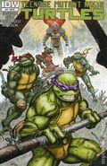 Teenage Mutant Ninja Turtles (2011 IDW) 24RI