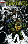 Teenage Mutant Ninja Turtles (2011 IDW) 22C