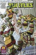 Teenage Mutant Ninja Turtles New Animated Adventures (2013 IDW) 1B