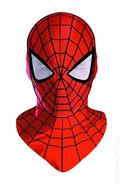 Spider-Man Deluxe Mask (2013 Disguise) ITEM#19062