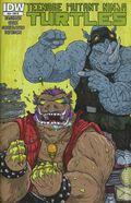 Teenage Mutant Ninja Turtles (2011 IDW) 28RI