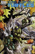 Teenage Mutant Ninja Turtles (2011 IDW) 29A