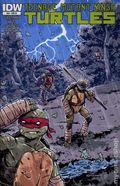 Teenage Mutant Ninja Turtles (2011 IDW) 29RI
