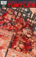 Teenage Mutant Ninja Turtles (2011 IDW) 1RE.JETPACK