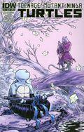 Teenage Mutant Ninja Turtles (2011 IDW) 31A