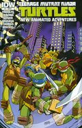 Teenage Mutant Ninja Turtles New Animated Adventures (2013 IDW) 11RI