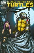 Teenage Mutant Ninja Turtles (2011 IDW) 34B