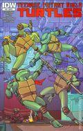 Teenage Mutant Ninja Turtles (2011 IDW) 34RI