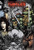 Teenage Mutant Ninja Turtles HC (2011-2015 IDW) The Ultimate Collection 1-REP