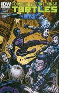 Teenage Mutant Ninja Turtles (2011 IDW) 38B
