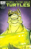Teenage Mutant Ninja Turtles (2011 IDW) 38A