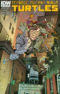 Teenage Mutant Ninja Turtles (2011 IDW) 39A