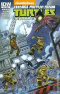 Teenage Mutant Ninja Turtles New Animated Adventures (2013 IDW) 17
