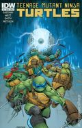 Teenage Mutant Ninja Turtles (2011 IDW) 41A